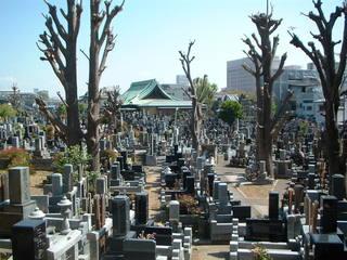 東漸寺の墓地